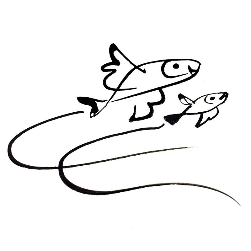 pesci che volano saltano acqua